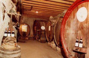 ancienne cave - Domaine de Champ Fleury
