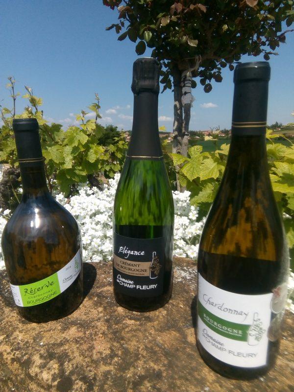 Les Chardonnay du Domaine de Champ-Fleury